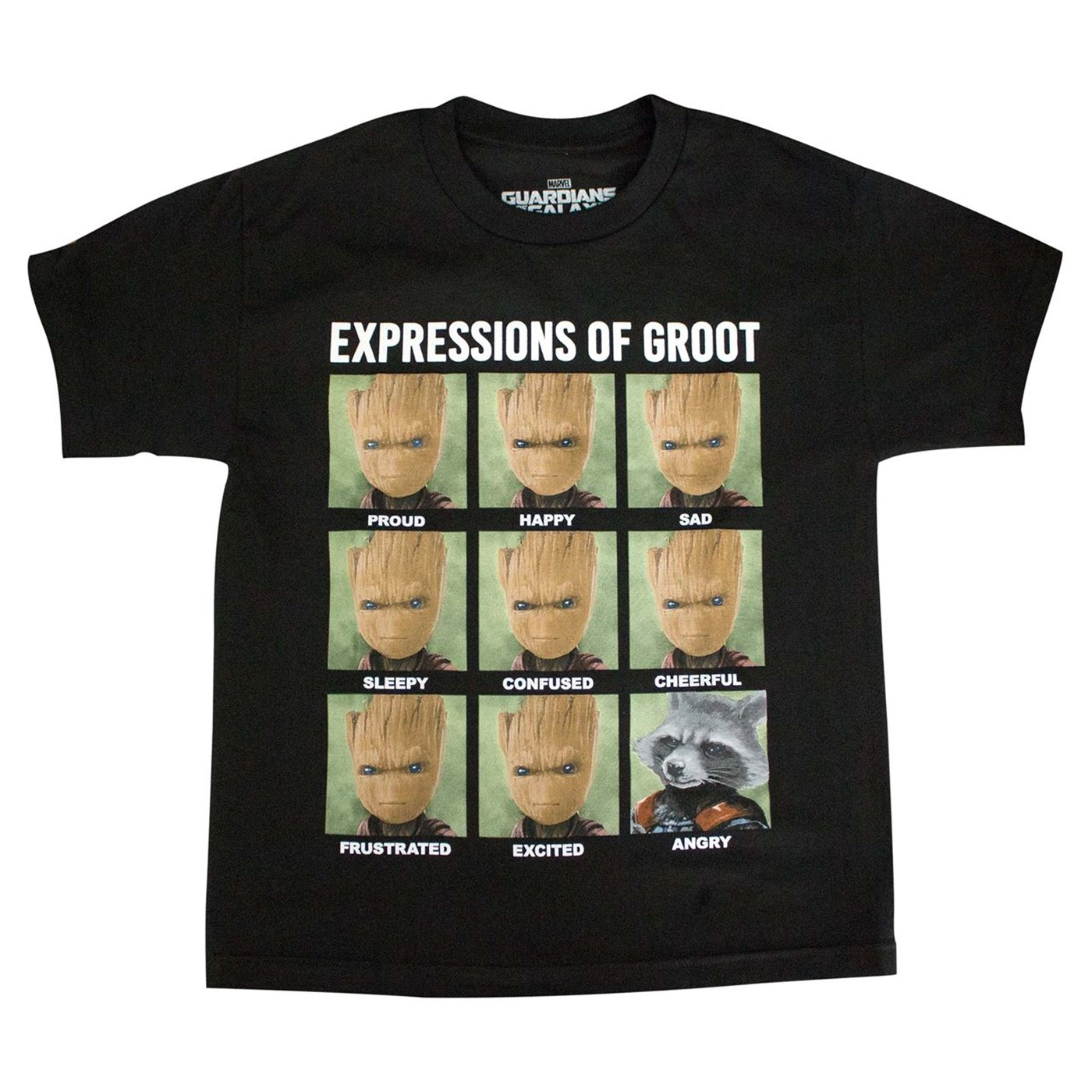Expressions of Groot and Rocket Boys T-shirt