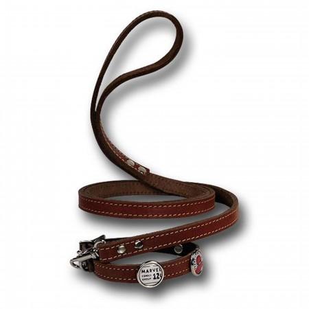 Spider-Man Dog Collar/Leash Combo