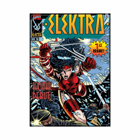 Elektra Variant Comic Cover Photo Magnet